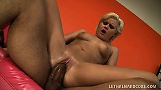 Exuberant cock-collecting bitch Kelly Summer is oiled and slammed