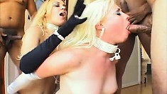 Uninhibited blondes can't wait for a taste of creamy dripping cum
