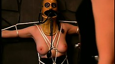 Brunette dominatrix tortures her lesbian, mask-wearing, slave