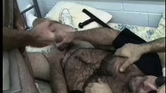 Sultry police officer gets his big hairy dick licked and sucked