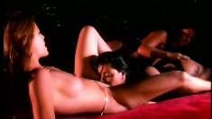 A trio of horny lesbian chicks play around with their big dildos