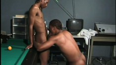 Ebony lovers make rough ass love all the way to some intense orgasms