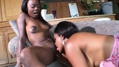 A pair of insatiable black lesbians love to eat each other out