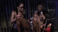 Fabulous hooker Simone and Jada Fire are attracted to black hambone