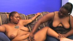 Obese ebony lesbians Browne and Beauty find their slits to tongue