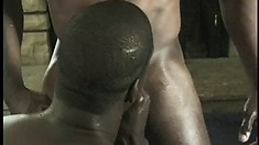 Hunky black stud fills the ebony boy's anal hole with his hard dick