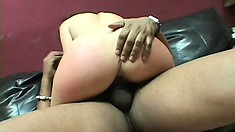 Bailey O'Dare slides a black dick in her pussy and rides it with desire