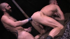 Two tattooed studs engage in a wild round of cocksucking and fist fucking