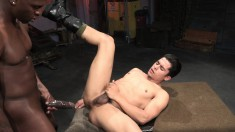 Beautiful White Boy Has A Black Stallion Roughly Banging His Tight Ass
