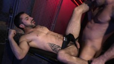 Gorgeous stud delivers a wonderful blowjob and gets drilled in the ass