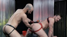 Gay Stallion Gives His Boyfriend's Sweet Ass The Treatment It Requires